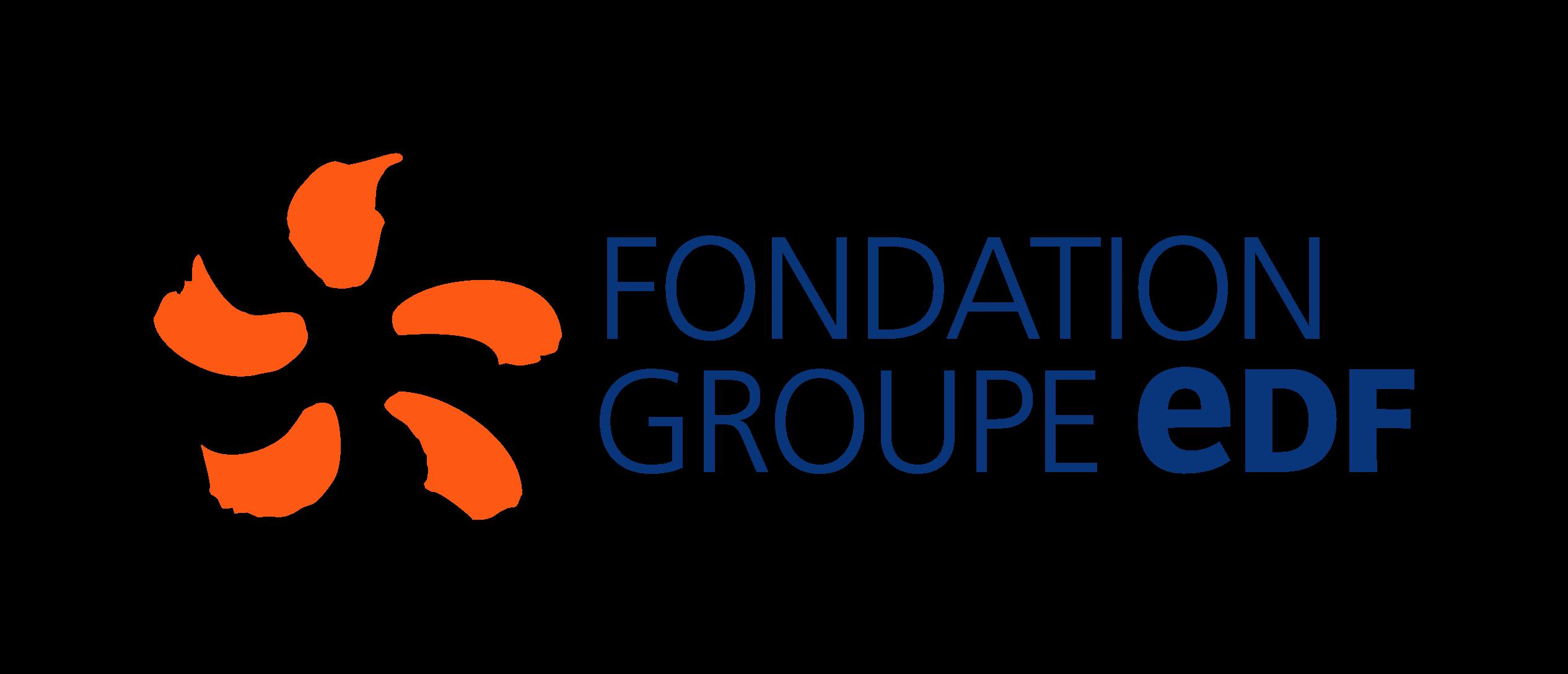 Logo Fondation Groupe EDF